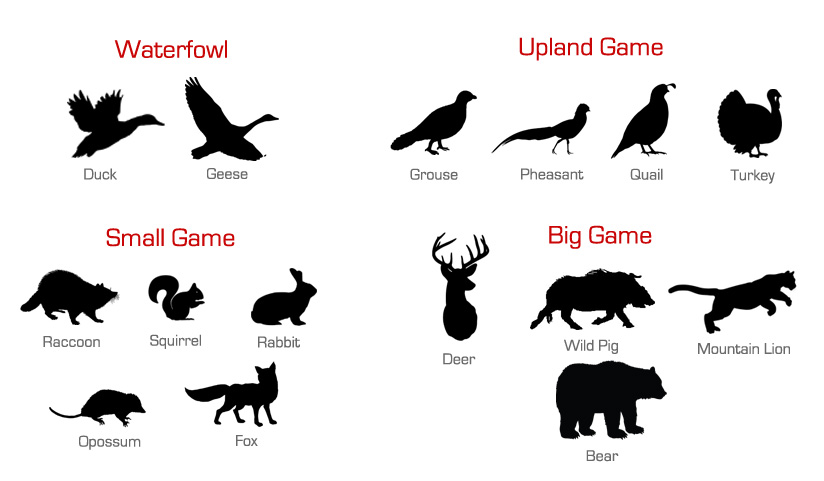 Types of Hunting Game