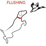 flushing-dog